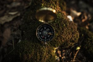 Compass on Mossy Rock